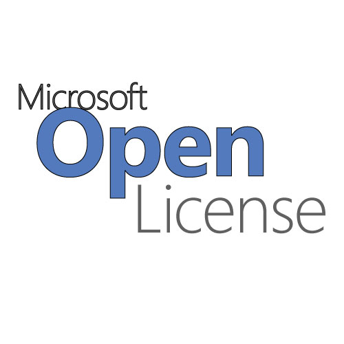 MS SVR Stand 2019 16 Cores License