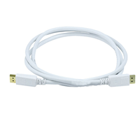 Display Port M-M Cable 6' White